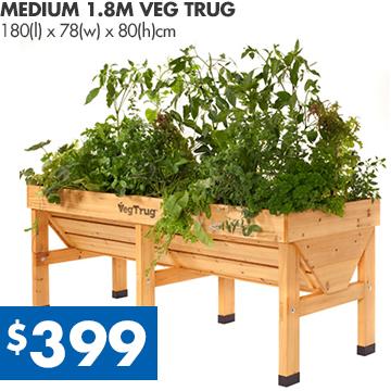 Veg-Trug-18-Medium