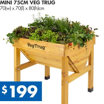 Veg-Trug-Mini